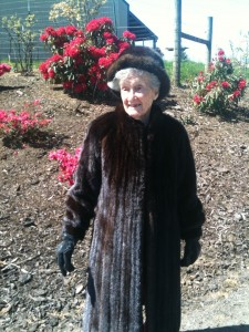 "Our elegant Olwyn out for her walk in her mink. ""If you've got it, you might as well use it!"""